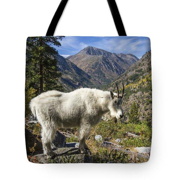 Mountain Goat Sentry Tote Bag