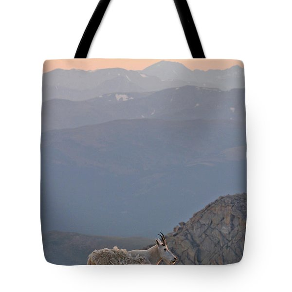 Tote Bag featuring the photograph Mountain Goat Sunset by Scott Mahon
