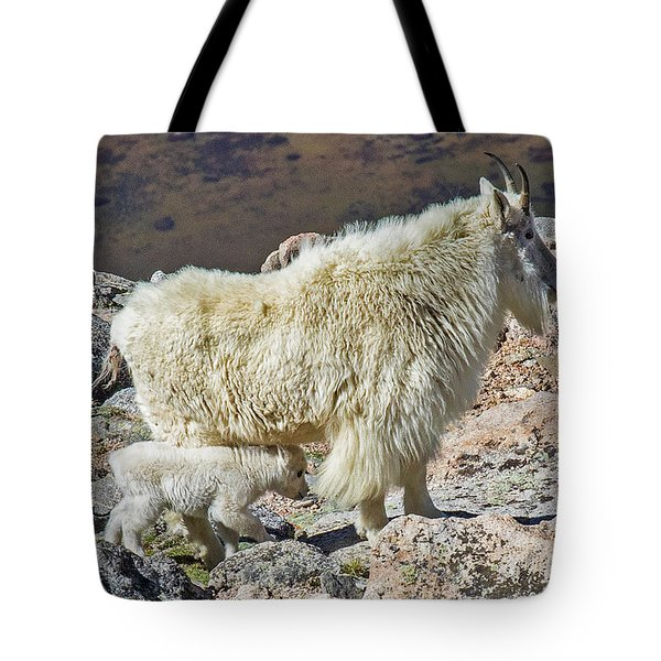 Mountain Goat With Her Kid Tote Bag