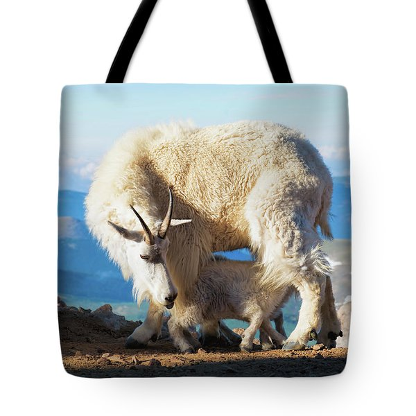 Mountain Goats Nanny And Kid Tote Bag