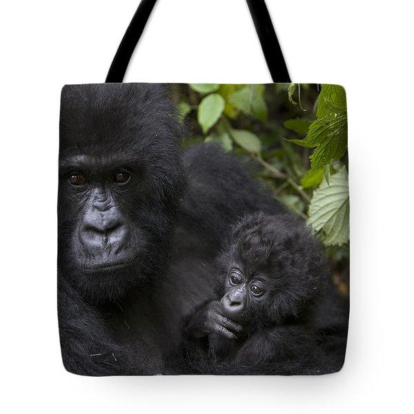 Mountain Gorilla Mother Holding 3 Month Tote Bag by Suzi Eszterhas