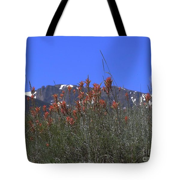 Mountain Gradure Tote Bag