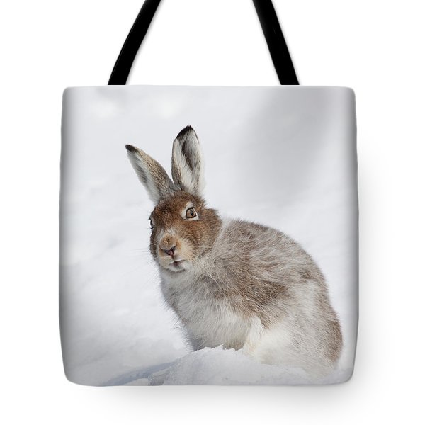 Tote Bag featuring the photograph Mountain Hare In Winter by Karen Van Der Zijden
