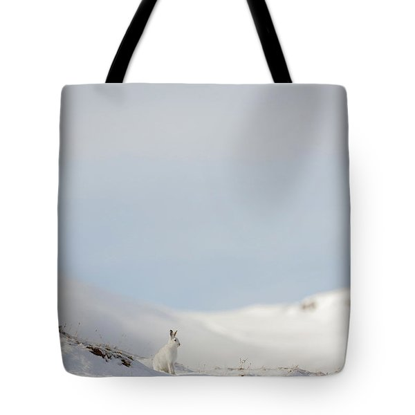 Mountain Hare On Hillside Tote Bag