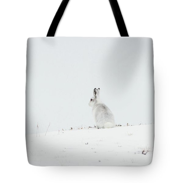 Mountain Hare Sat In Snow Tote Bag