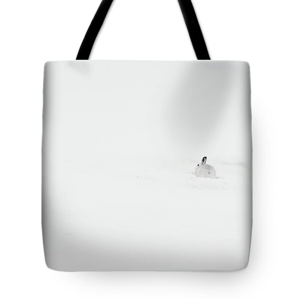 Mountain Hare Small In Frame Right Tote Bag
