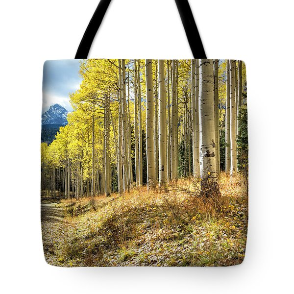 Mountain Highlights Tote Bag