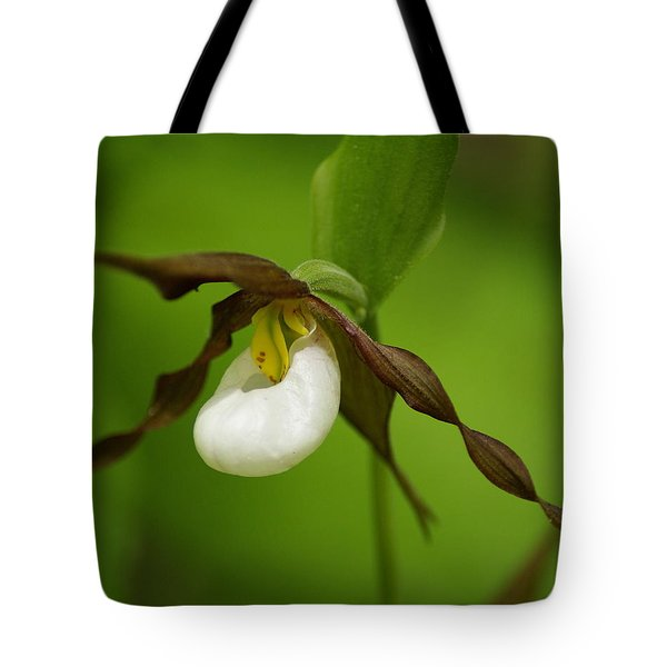 Tote Bag featuring the photograph Mountain Lady's Slipper by Ben Upham III