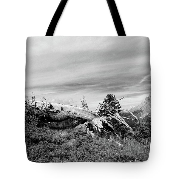 Mountain Landscape With Fallen Tree And View At Alps In Switzerland Tote Bag