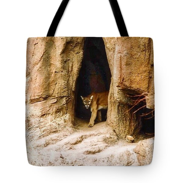 Mountain Lion In The Desert Tote Bag