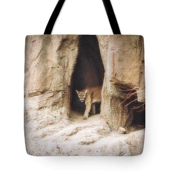 Mountain Lion - Light Tote Bag