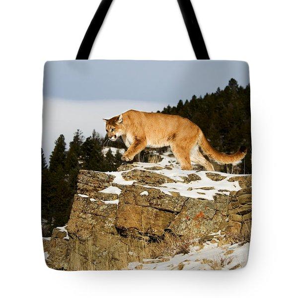 Mountain Lion On Rocks Tote Bag