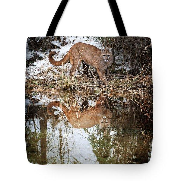 Mountain Lion Reflection Tote Bag