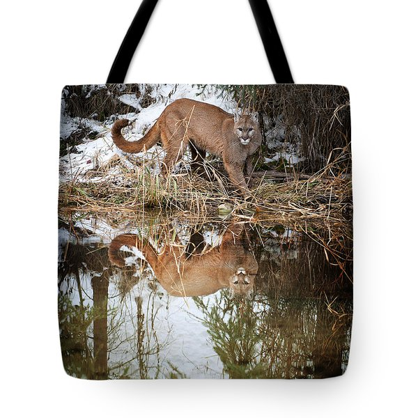 Mountain Lion Reflection Tote Bag