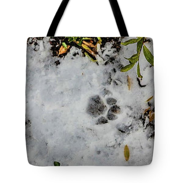 Mountain Lion Tracks In Snow Tote Bag