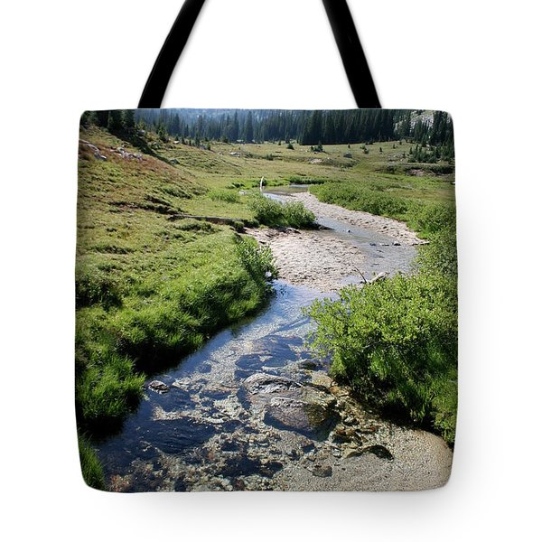 Mountain Meadow And Stream Tote Bag by Quin Sweetman
