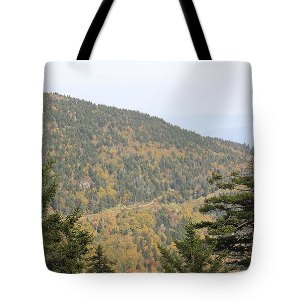 Mountain Passage Tote Bag