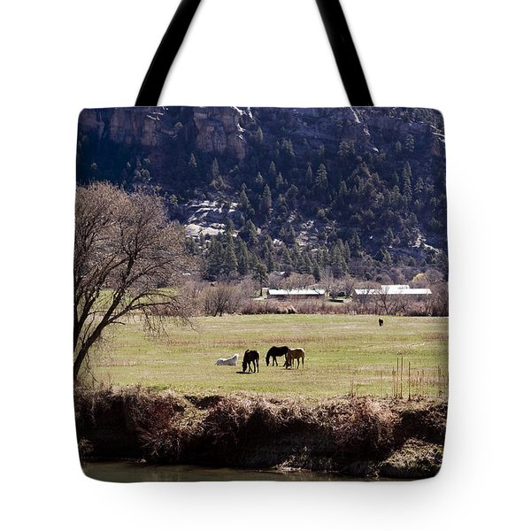 Tote Bag featuring the photograph Mountain Pasture Vertical by Lorraine Devon Wilke