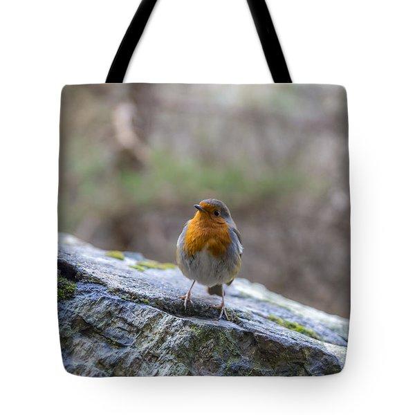 Mountain Robin Tote Bag