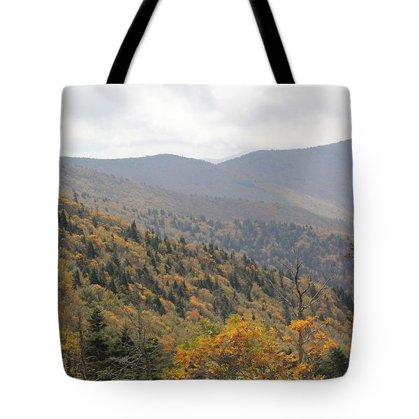 Mountain Side Long View Tote Bag