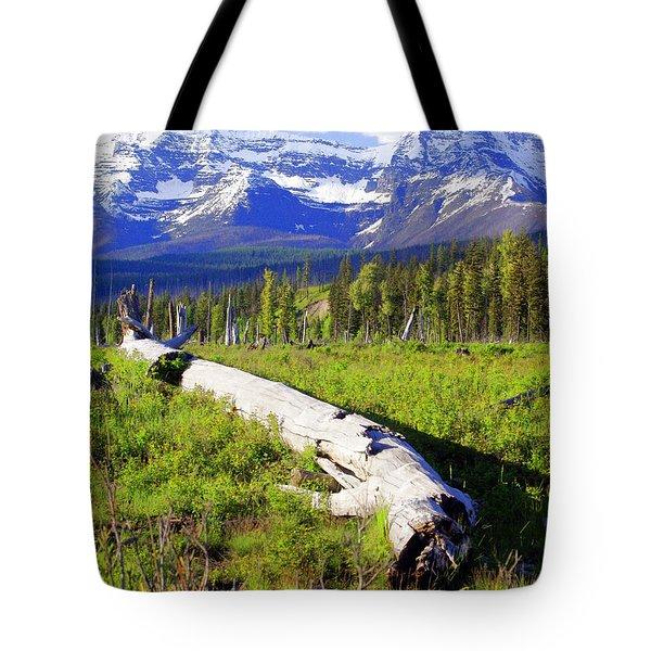Mountain Splendor Tote Bag by Marty Koch