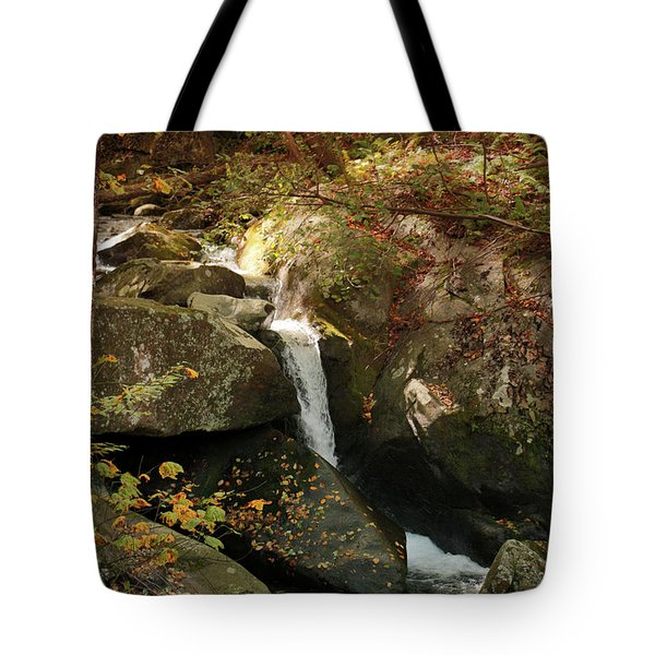 Mountain Stream Tote Bag by Rebecca Davis
