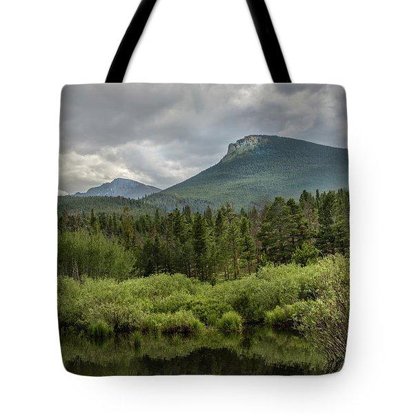 Mountain View From The Marsh Tote Bag