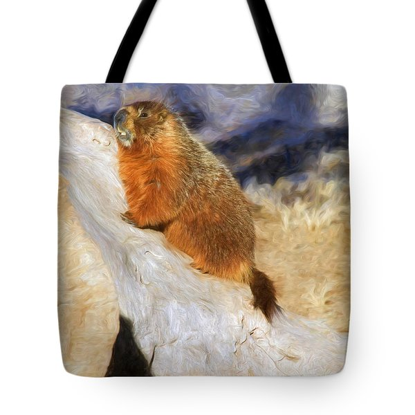 Mountains To Climb Tote Bag