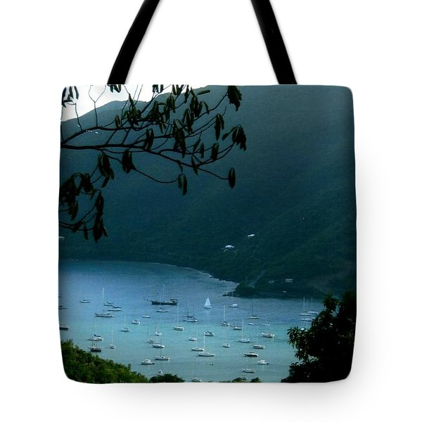Mountainside Coral Bay Tote Bag by Robert Nickologianis