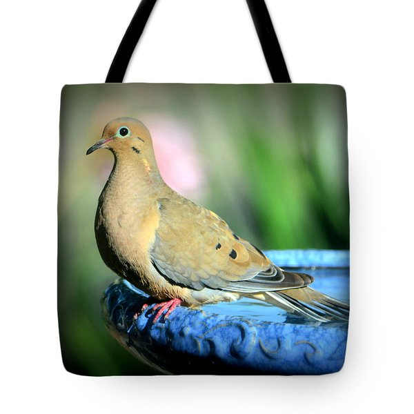 Mourning Dove Perched Tote Bag by Josephine Buschman