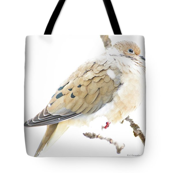 Mourning Dove, Snowy Morning Tote Bag