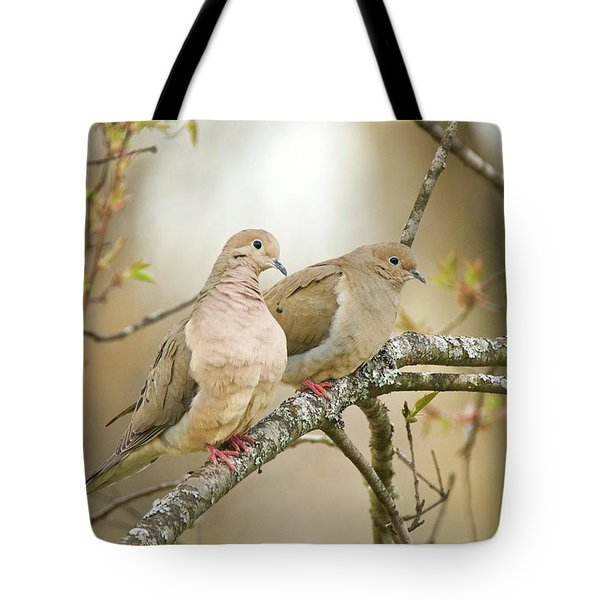 Mourning Doves 4142 Tote Bag
