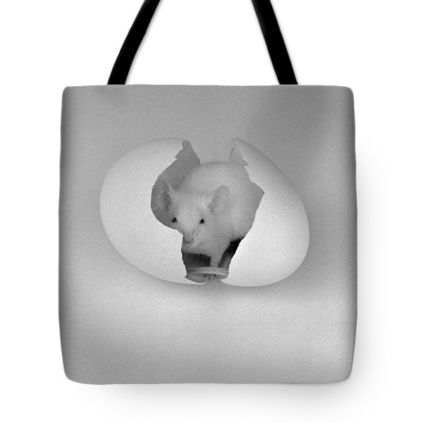Mouse House Tote Bag by Michael Swanson