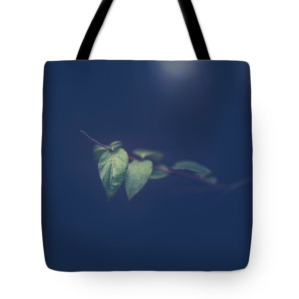 Tote Bag featuring the photograph Moving In The Shadows by Shane Holsclaw