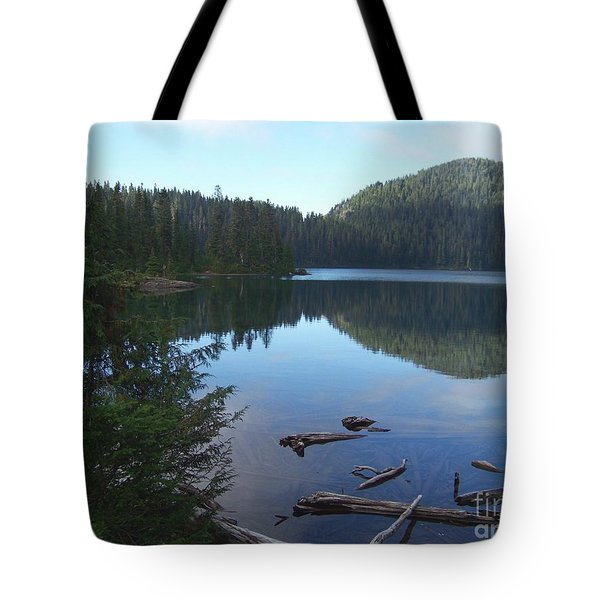 Tote Bag featuring the photograph Mowich Lake Reflection by Charles Robinson