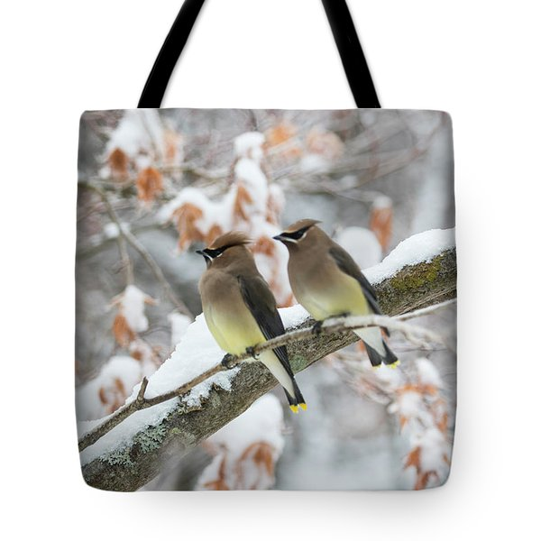 Tote Bag featuring the photograph Mr. And Mrs. Cedar Wax Wing by Betty Pauwels