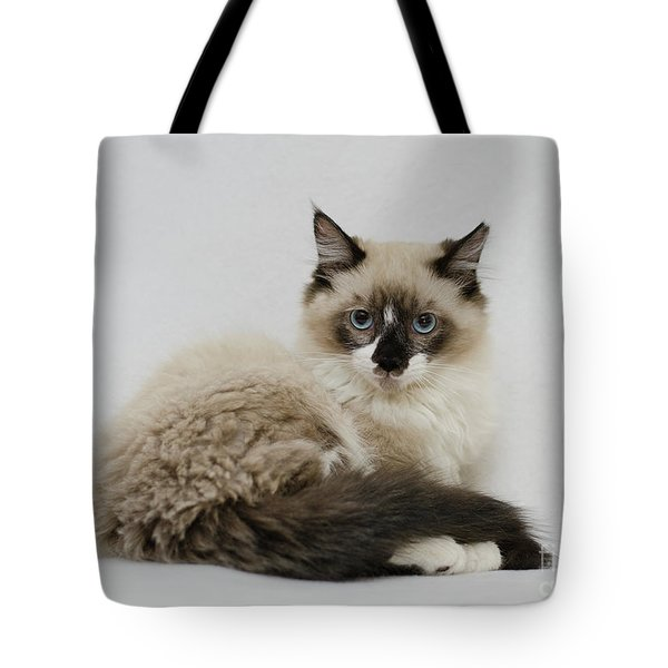 Tote Bag featuring the photograph Mr. Atkin by Irina ArchAngelSkaya