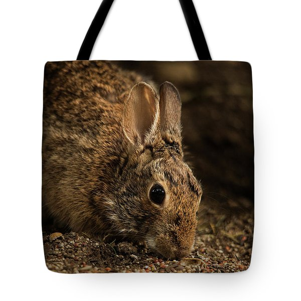 Tote Bag featuring the photograph Mr. B by Bob Cournoyer