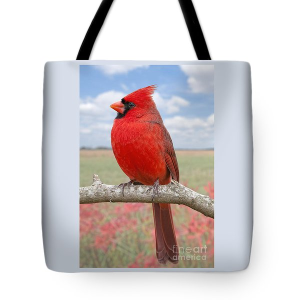 Mr. Cheerful Tote Bag