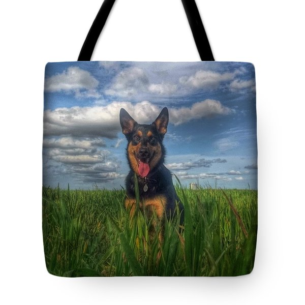 Mr Darcy Squared Tote Bag by Isabella F Abbie Shores FRSA