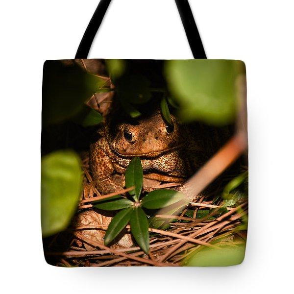 Mr Frog Tote Bag