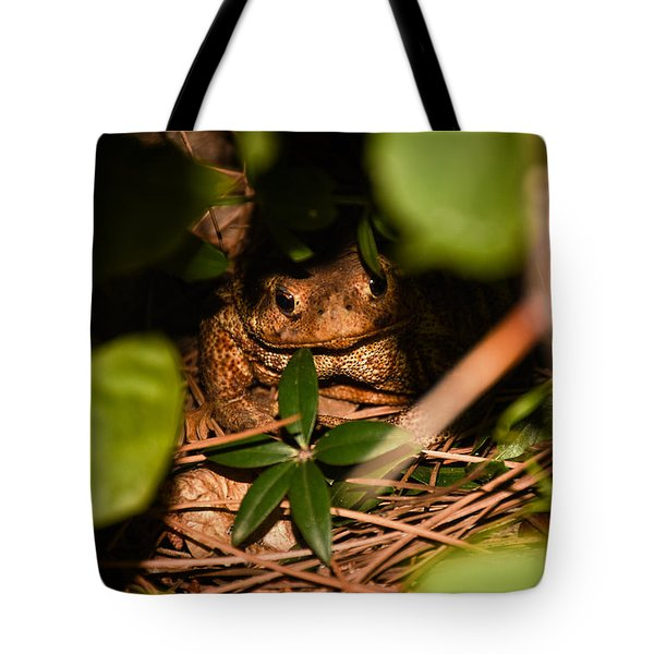 Mr Frog Tote Bag