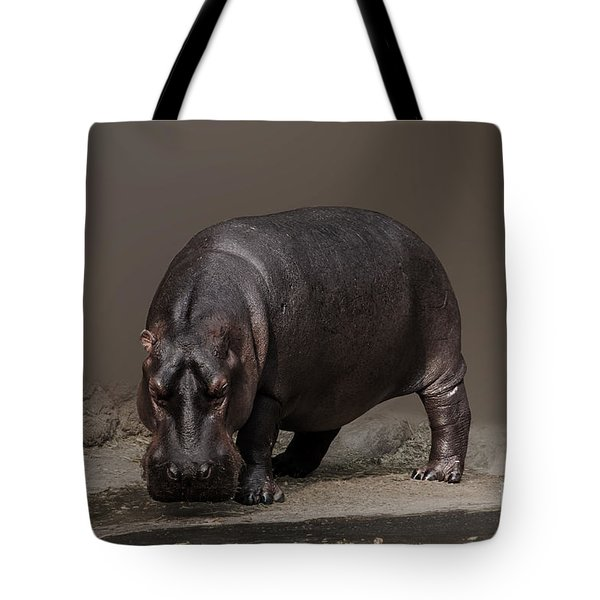Mr. Hippo Tote Bag by Charuhas Images