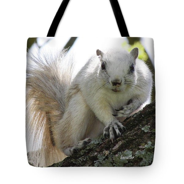 Mr. Inquisitive II Tote Bag by Betsy Knapp