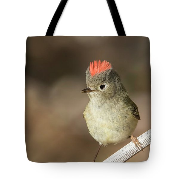 Tote Bag featuring the photograph Mr Kinglet  by Mircea Costina Photography