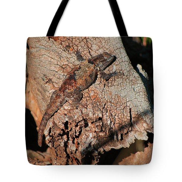 Mr. Lizard - Tucson Arizona Tote Bag by Donna Greene
