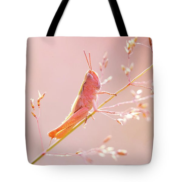 Mr Pink - Pink Grassshopper Tote Bag by Roeselien Raimond
