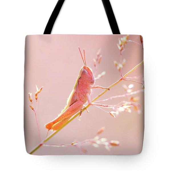 Mr Pink - Pink Grassshopper Tote Bag