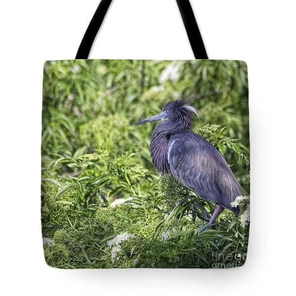 Tote Bag featuring the photograph Mr. Three Shades Of Blue by Mary Lou Chmura
