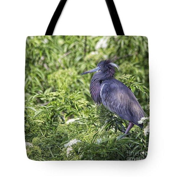 Mr. Three Shades Of Blue Tote Bag